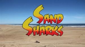 shark-sandsharks-590x350