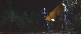 Friday The 13th Part 7: The New Blood(1988)