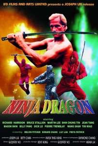 ninja_dragon_poster_01