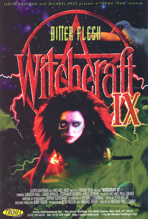 WITCH_CRAFT_IX_web